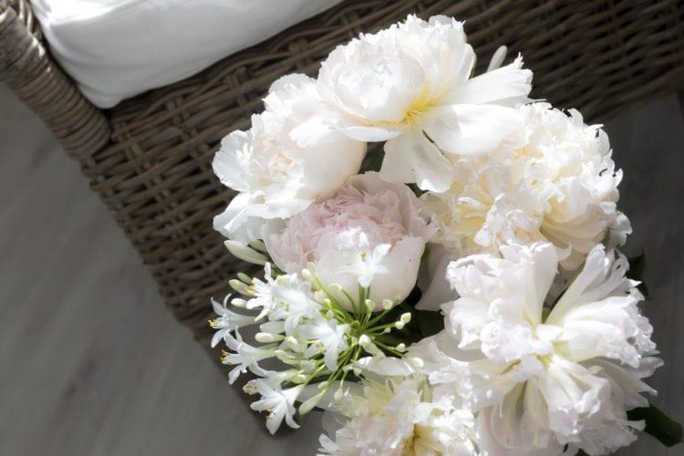Blumen im Wartezimmer